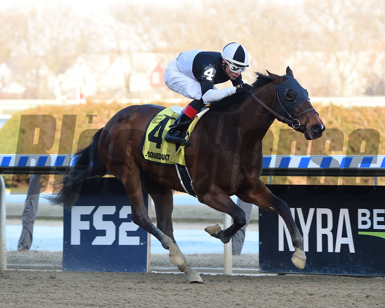 Amundson wins the 2020 Hollie Hughes Stakes at Aqueduct Racetrack. Photo: Coglianese Photos