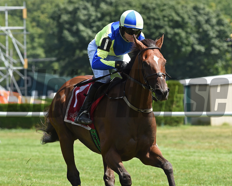Snap Decision wins the 2020 Michael G. Walsh Novice Stakes at Saratoga<br /> Coglianese Photos/Chelsea Durand