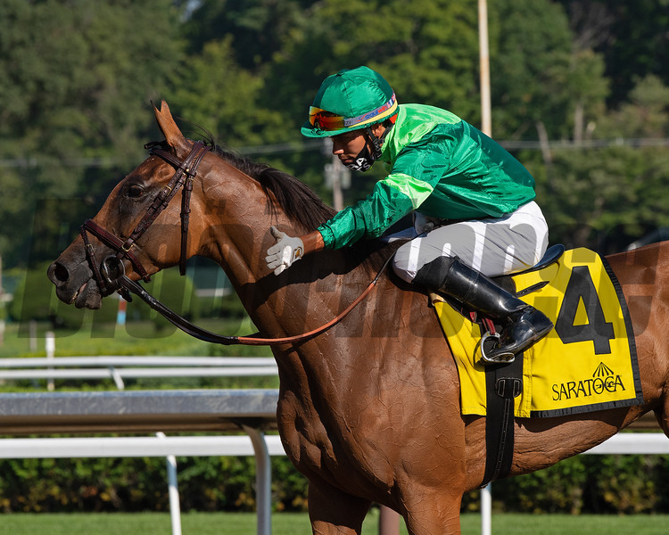 My Sister Nat with jockey Jose Ortiz wins the 17th running of The Waya GIII  at the Saratoga Race Course Saturday Aug.8, 2020 in Saratoga Springs, N.Y.