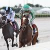 Quinoa Tifah wins the 2020 Our Dear Peggy Stakes at Gulfstream Park<br /> Coglianese Photos/Ryan Thompson