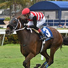 Kelsey's Cross wins the 2020 Ginger Punch Stakes at Gulfstream Park<br /> Coglianese Photos/Ryan Thompson