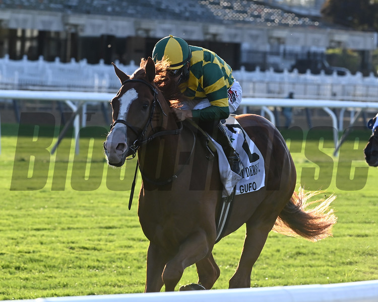 Gufo wins the 2020 Belmont Derby Invitational<br /> Coglianese Photos/Joe Labozzetta