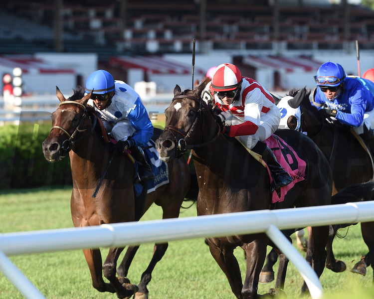 Selflessly wins the 2020 Lake George Stakes at Saratoga<br /> Coglianese Photos/Chelsea Durand
