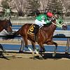 Diamond King wins the 2020 Stymie Stakes at Aqueduct. Photo: Coglianese Photos/Robert Mauhar