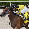 He's Incredible - AOC, Gulfstream Park, June 3, 2020<br /> Coglianese Photos/Ryan Thompson