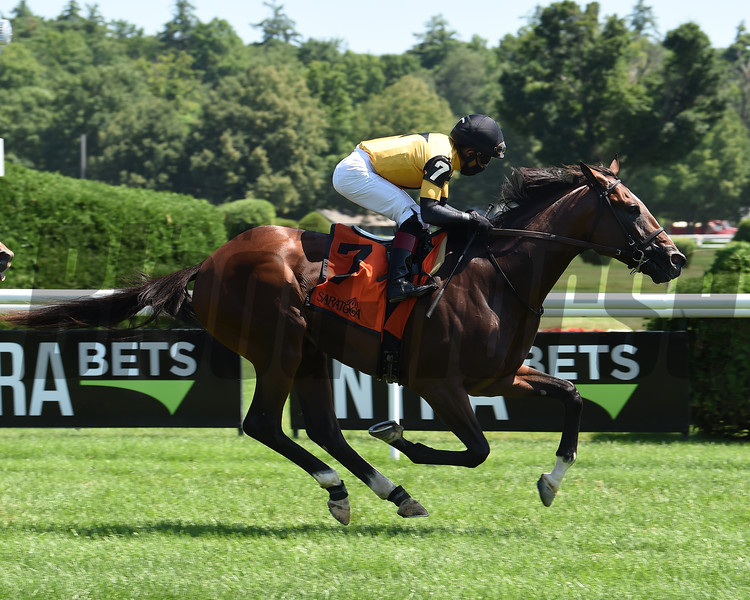 Decorated Invader wins the 2020 National Museum of Racing Hall of Fame Stakes at Saratoga<br /> Coglianese Photos