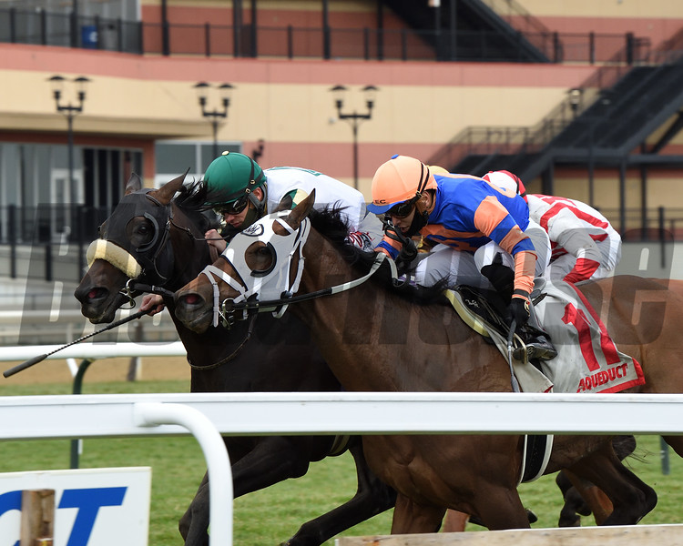 City Man wins the 2020 Gio Ponti Stakes at Aqueduct.<br /> Coglianese Photos/Chelsea Durand