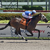 Street Exchange - Maiden Win, Gulfstream Park, August 7, 2020<br /> Coglianese Photos/Lauren King
