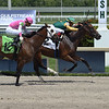 Amadora - Maiden Win, Gulfstream Park, May 28, 2020<br /> Coglianese Photos/Lauren King