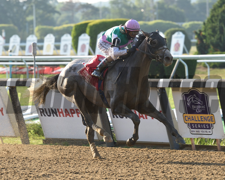 Tacitus wins the Suburban Stakes Saturday, July 4, 2020 at Belmont Park. Photo: Coglianese Photos