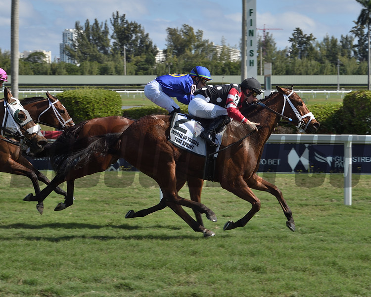 Texas Wedge wins the 2020 World of Trouble Turf Sprint Stakes<br /> Coglianese Photos/Lauren King
