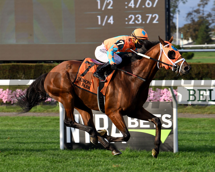 Somelikeithotbrown wins the 2020 Mohawk Stakes at Belmont Park<br /> Coglianese Photos