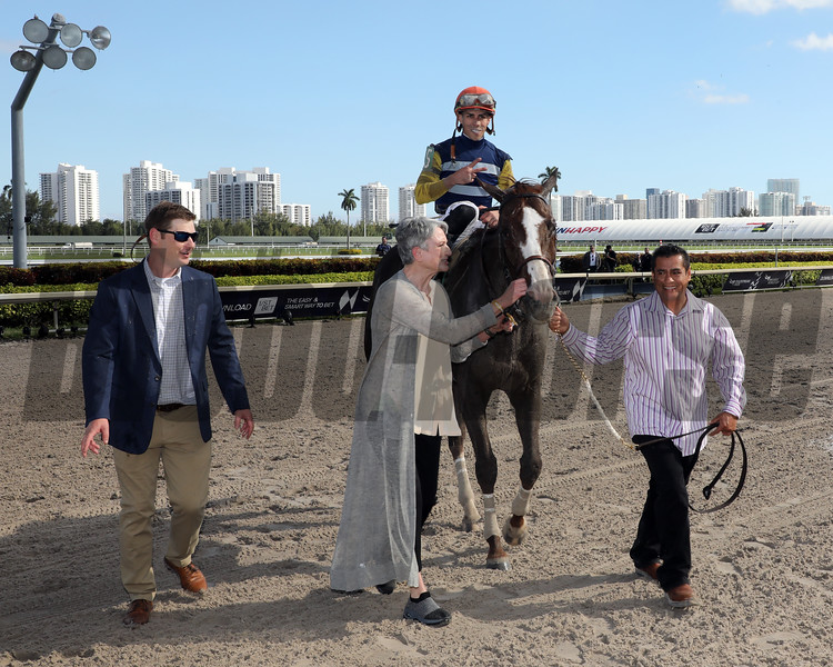 Phat Man withered Ortiz Jr. Up wins the 2020  Fred Hooper G3 for trainer Kent Sweezey and owners Marianne Stribling, Force Five Racing and Rivers Racing Stables , Gulfstream Park, FL. Photo: Photos by Z