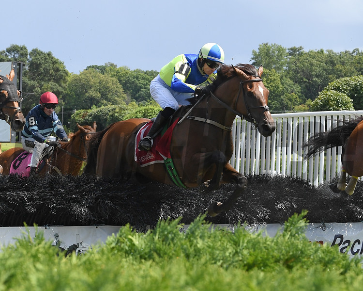 Snap Decision wins the 2020 Michael G. Walsh Novice Stakes at Saratoga<br /> Coglianese Photos/Susie Raisher