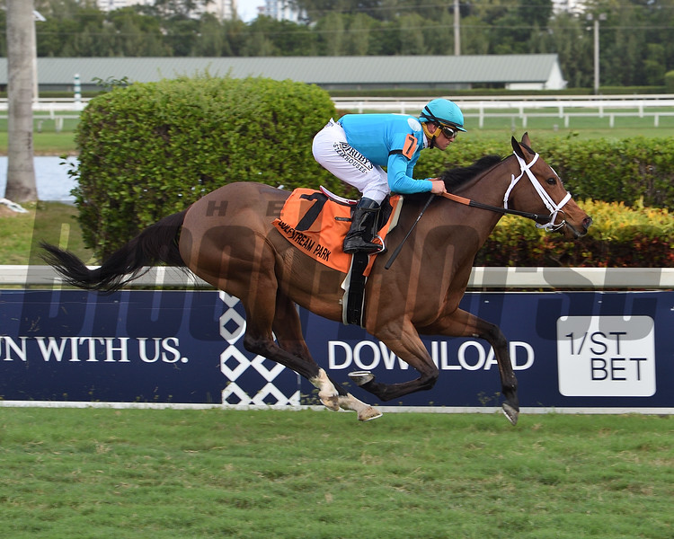 Starship Jubilee wins the 2020 Sunshine Millions Filly and Mare Turf Stakes at Guflstream Park<br /> Coglianese Photos/Lauren King