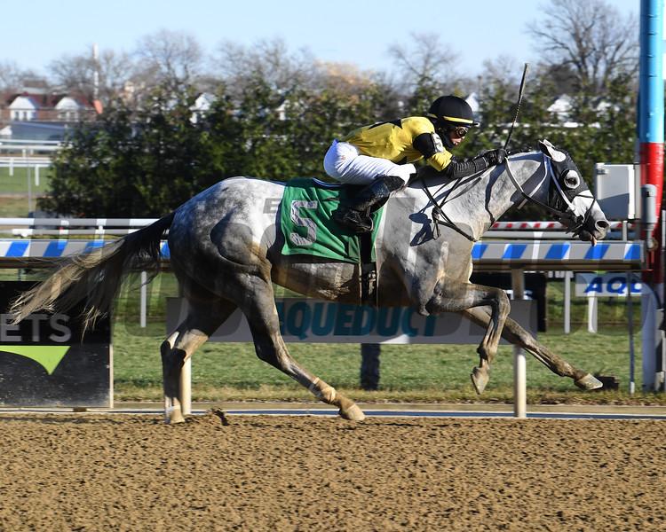 Chestertown wins an allowance optional claiming race Sunday, December 6, 2020 at Aqueduct. Photo: Coglianese Photos