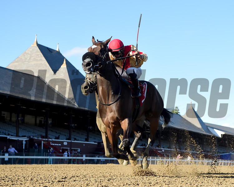 Makingcents wins the 2020 Fleet Indian Stakes at Saratoga<br /> Coglianese Photos