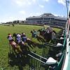 Atomic Blonde wins 2020 South Beach Stakes at Gulfstream Park. Photo: Coglianese Photos/Ryan Thompson
