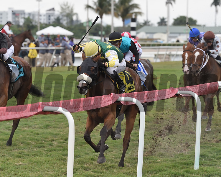 Cheermeister wins the 2020 Sweetest Chant at Gulfstream Park<br /> Coglianese Photos/Ryan Thompson