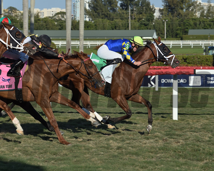 Sombeyay wins the 2020 Canadian Turf at Gulfstream Park<br /> Coglianese Photos