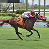 Can't Buy Love - Maiden Win, Gulfstream Park, July 26, 2020<br /> Coglianese Photos/Lauren King