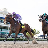 Cool Arrow wins the 2020 Smile Sprint Stakes at Gulfstream Park<br /> Coglianese Photos/Ryan Thompson