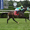 Cross Border wins the 2020 Lubash Stakes at Saratoga<br /> Coglianese Photos