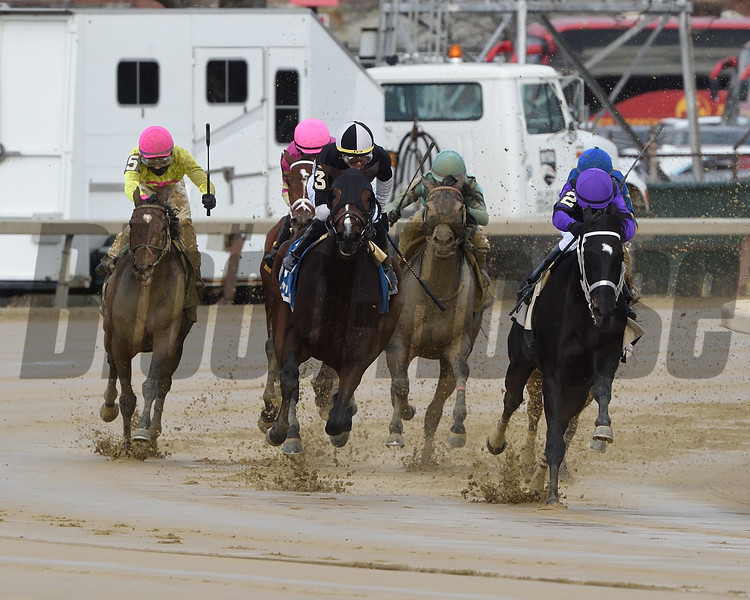Sharp Starr wins the 2020 Go for Wand Handicap at Aqueduct<br /> Coglianese Photos/Dom Napolitano