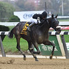 Laobanonaprayer wins the 2020 Maid of the Mist Stakes at Belmont Park<br /> Coglianese Photos