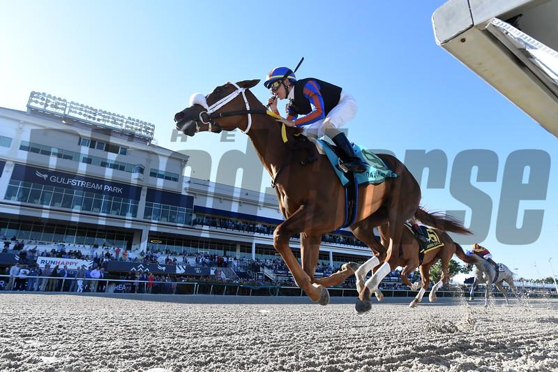 Tonalist's Shape wins the 2020 Davona Dale Stakes at Gulfstream Park. Photo: Coglianese Photos