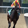 Dayoutoftheoffice wins the 2020 Frizette Stakes at Belmont Park<br /> Coglianese Photos/Dom Napolitano