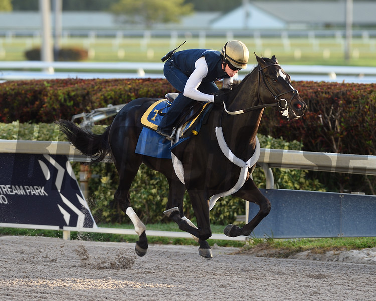Independence Hall - Morning - Gulfstream Park - 032220. Photo: Coglianese Photos/Ryan Thompson