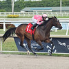 Tax wins the 2020 Harlan's Holiday Stakes at Gulfstream Park<br /> Coglianese Photos/Lauren King