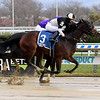 Sharp Starr wins the 2020 Go for Wand Handicap at Aqueduct<br /> Coglianese Photos