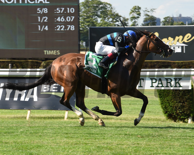 Mentality wins the 2020 Hessonite Stakes at Belmont Park<br /> Coglianese Photos