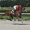 Great Sister Diane - AOC, Gulfstream Park West, October 23, 2020<br /> Coglianese Photos/Lauren King
