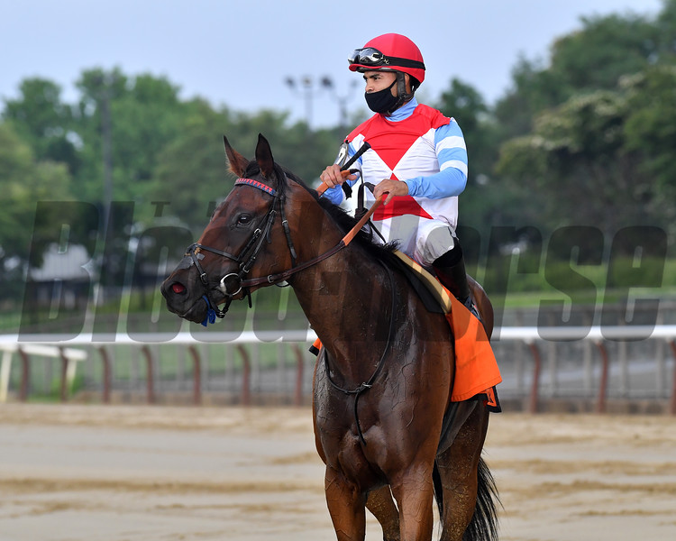 Mean Mary wins the 2020 New York Stakes at Belmont Park<br /> Coglianese Photos/Joe Labozzetta