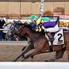 Water White wins the 2020 Busher Stakes at Aqueduct<br /> Coglianese Photos/Joe Labozzetta