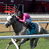 Jack and Noah wins the 2020 Mahony Stakes at Saratoga<br /> Coglianese Photos/Chelsea Durand