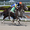 Phat Man wins the 2020 Fred W. Hooper Stakes at Gulfstream Park<br /> Coglianese Photos