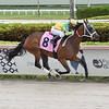 Allegedly Perfect - Maiden Win, Gulfstream Park, May 15, 2020<br /> Coglianese Photos/Lauren King