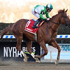 Mr. Buff wins the 2020 Haynesfield Stakes at Aqueduct<br /> Coglianese Photos/Chelsea Durand