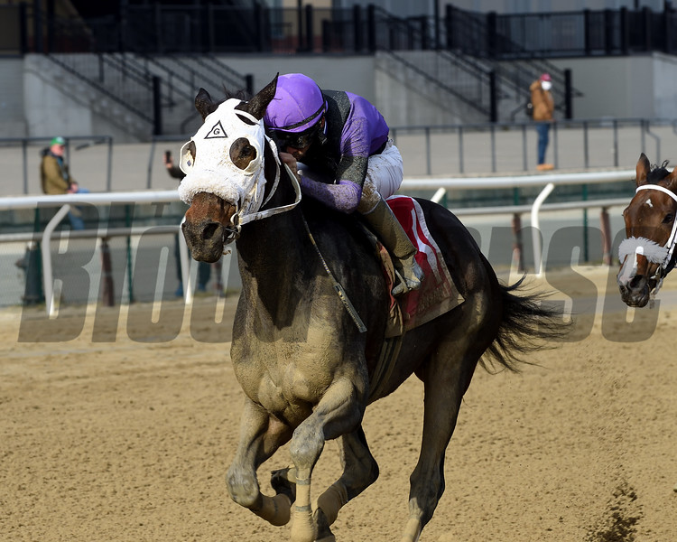 Lucky Move wins the Bay Ridge Stakes Sunday, December 13, 2020 at Aqueduct. Photo: Coglianese Photos/Chelsea Durand