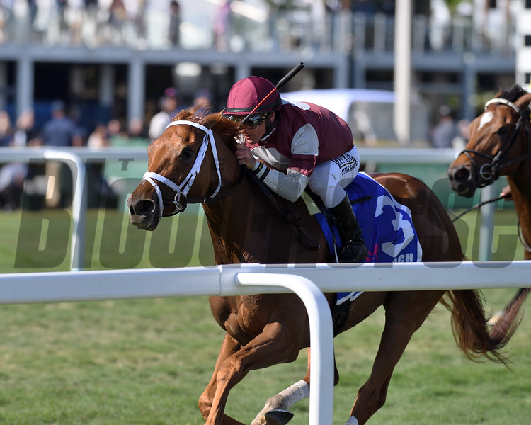 Atomic Blonde wins the 2020 South Beach Stakes at Gulfstream Park<br /> Coglianese Photos/Ryan Thompson