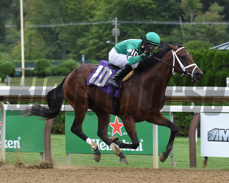 Mashnee Girl - Maiden WIn, Saratoga, September 3, 2020<br /> Coglianese Photos/Chelsea Durand