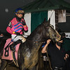 Creed - Maiden Win, Belmont Park, June 11, 2020<br /> 2000th win for Jose Ortiz<br /> Coglianese Photos
