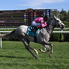 Jack and Noah wins the 2020 Mahony Stakes at Saratoga<br /> Coglianese Photos/Susie Raisher