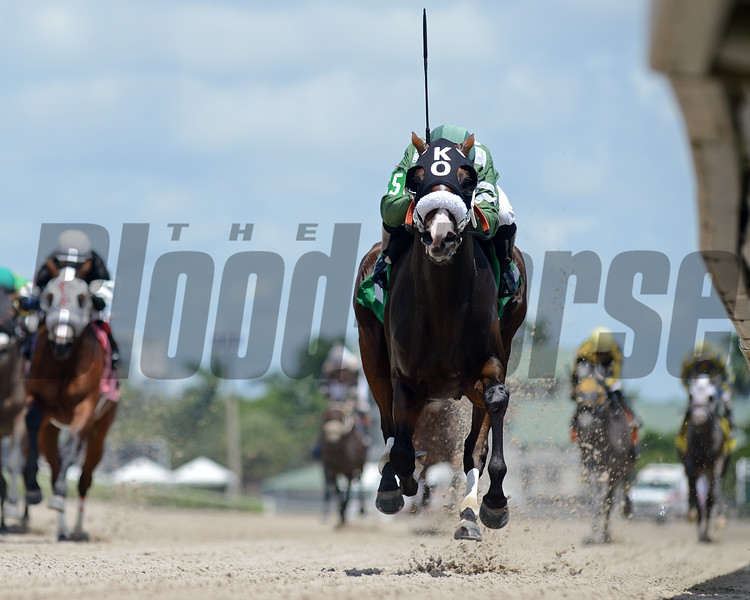 Top Boss - Maiden Win, Gulfstream Park, August 13, 2020<br /> Coglianese Photos/Ryan Thompson