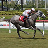 Over the Channel - AOC, Gulfstream Park, July 15, 2020<br /> Coglianese Photos/Lauren King