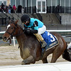 Brooklyn Strong wins the 2020 Remsen Stakes at Aqueduct<br /> Coglianese Photos/Chelsea Durand